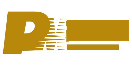 pm-icon